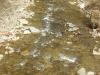 Кадри от Чифлика 33