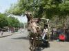 По пътя към Тадж Махал