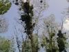 Красива природа около езерото Борово Око