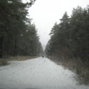 Зимна свежест
