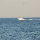 Разказ за една почивка на Българското Черноморие: Последна надежда