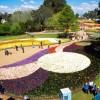 Екскурзия до Венло, Холандия; Посещение на Флориаде – световна изложба на цветя, която се провежда на всеки десет години