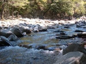 Красивата река Чая