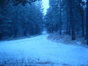 Снежка красота