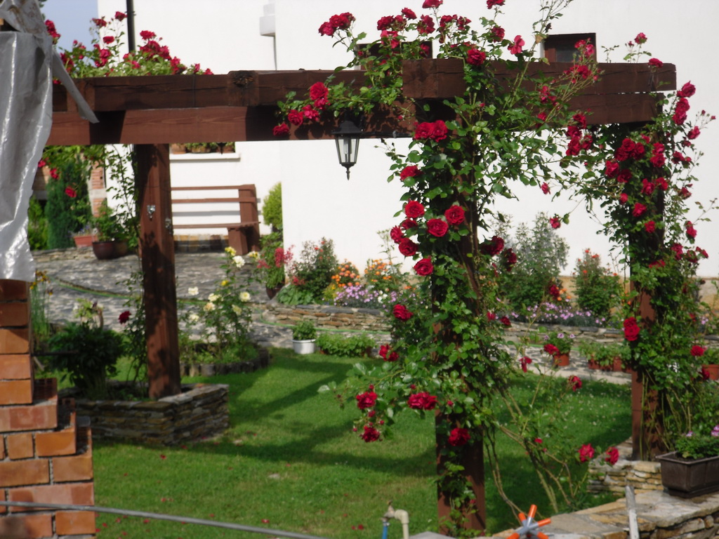 Уютна градина във частна вила