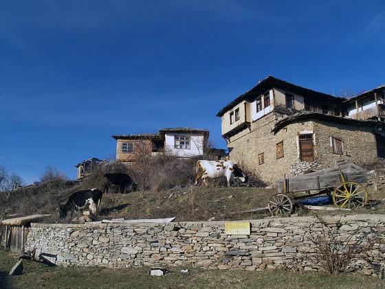 Къщи в село Лещен