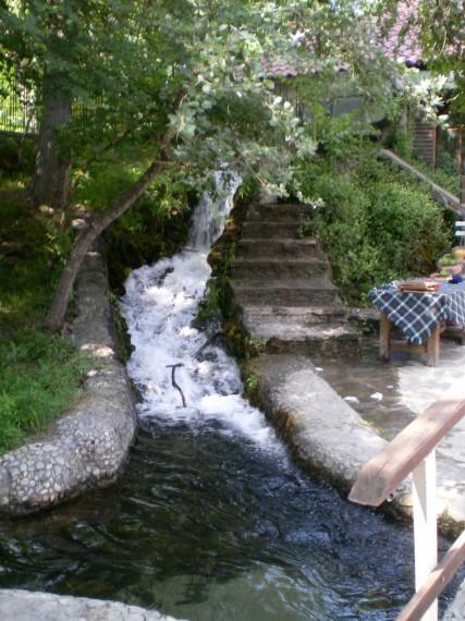 SANY4873 427x570 Разходка до едно вълшебно кътче от природата