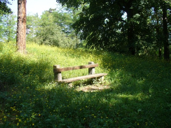 Park Kaleto 1