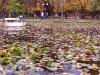 Борисовата градина - София
