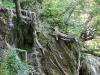 Крушунските водопади 3