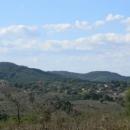 Село Визица