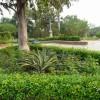 Индия: Градината на Петте Сетива