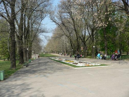 Алея в парка на малдежта в Русе
