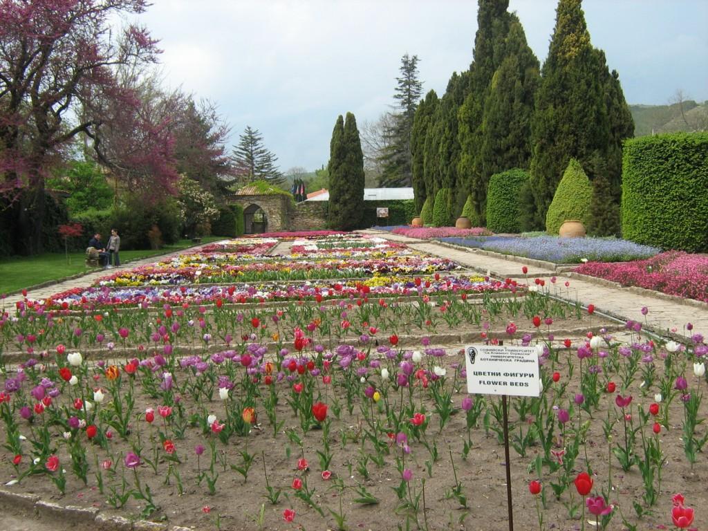 Градината на Аллах - Ботаническа градина