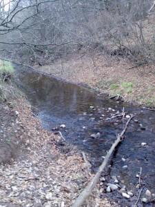 Reka - Razhodka iz Rodopite