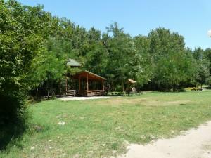 В парка 2