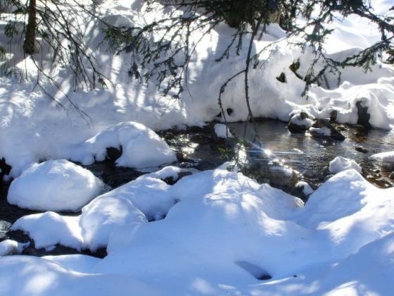 Рекичка по пътя към връх Мальовица - Марияна Георгиева