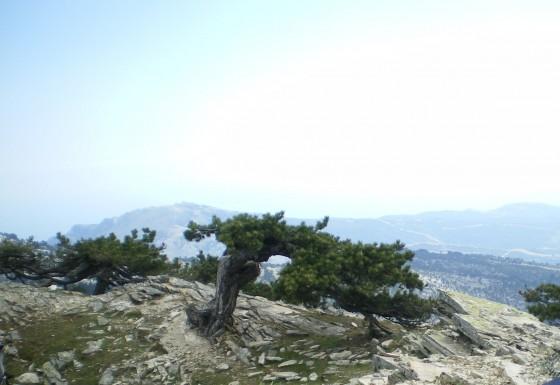 На връх Ипсарио