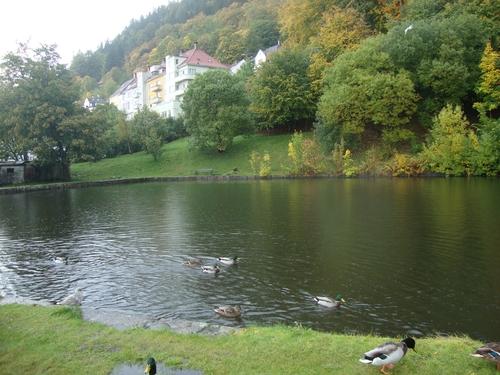 Езерце сред гората